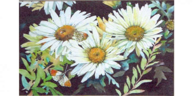 Gillian French - Daisies
